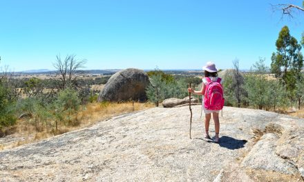 Black Hill Ridge Circuit – Black Hill Reserve – Kyneton (Bare Bones Bushwalking)