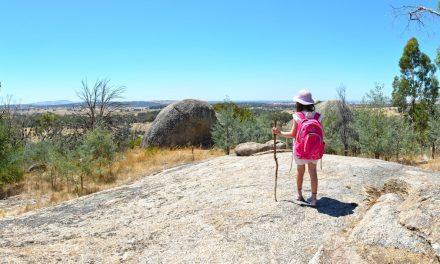 Black Hill Ridge Circuit Reserve Kyneton Bare Bones Bushwalking