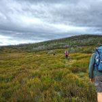 Lake Tali Karng via McFarlane's Saddle – Victoria's Alpine National Park (Bare Bones Bushwalking)