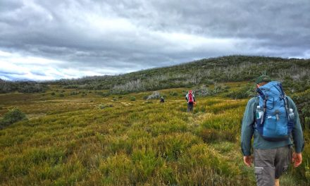 Lake Tali Karng via McFarlane's Saddle – Victoria's Alpine National Park (Bare Bones Bushwalking)
