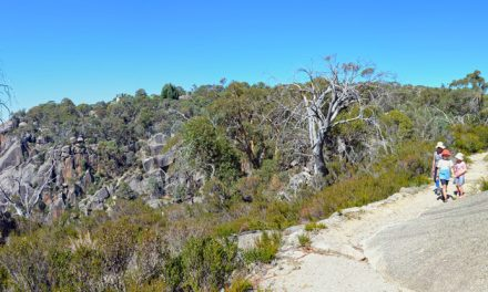 Gorge Heritage Walk – Mount Buffalo National Park – Victoria (Bare Bones Bushwalking)