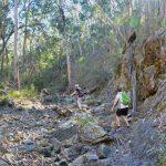 Whiskey Creek Circuit – Lerderderg State Park – Victoria (Bare Bones Bushwalking)