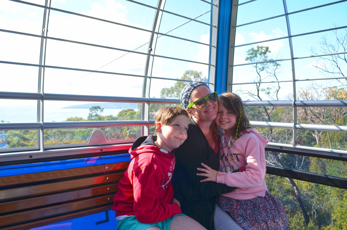 Arthurs Seat Eagle & Walks - Arthurs Seat State Park - Mornington Peninsula - Victoria