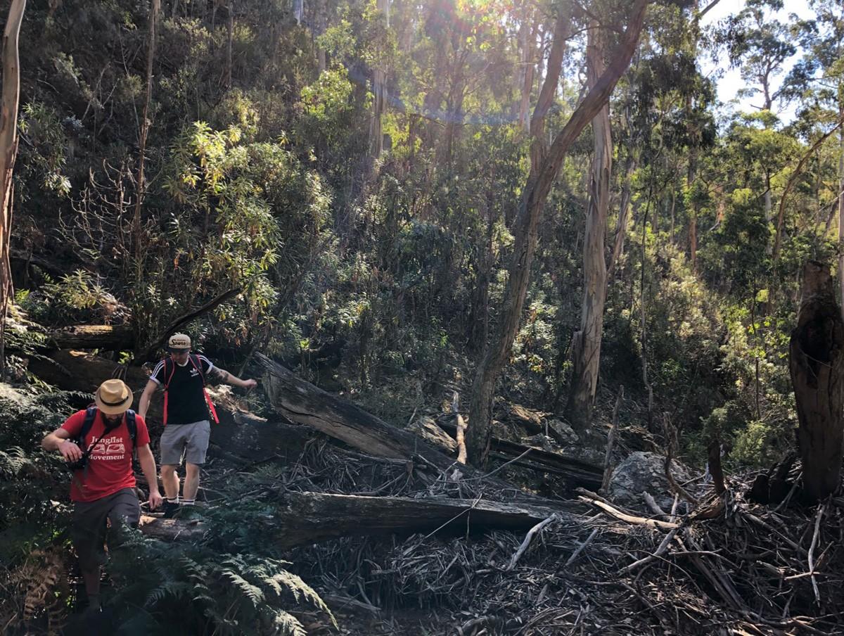 Whiskey Creek Circuit - Lerderderg State Park - Victoria