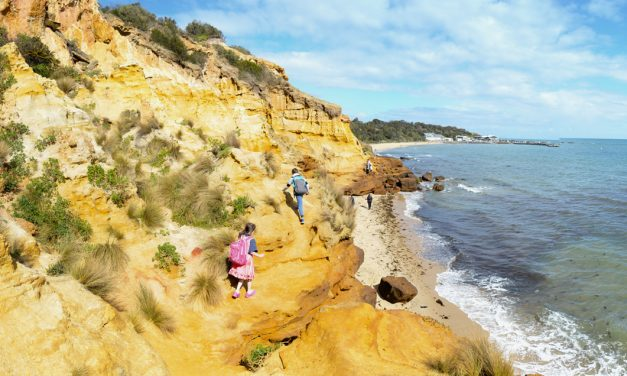 Red Bluff Circuit Walk, Sandringham – Victoria (Bare Bones Bushwalking)