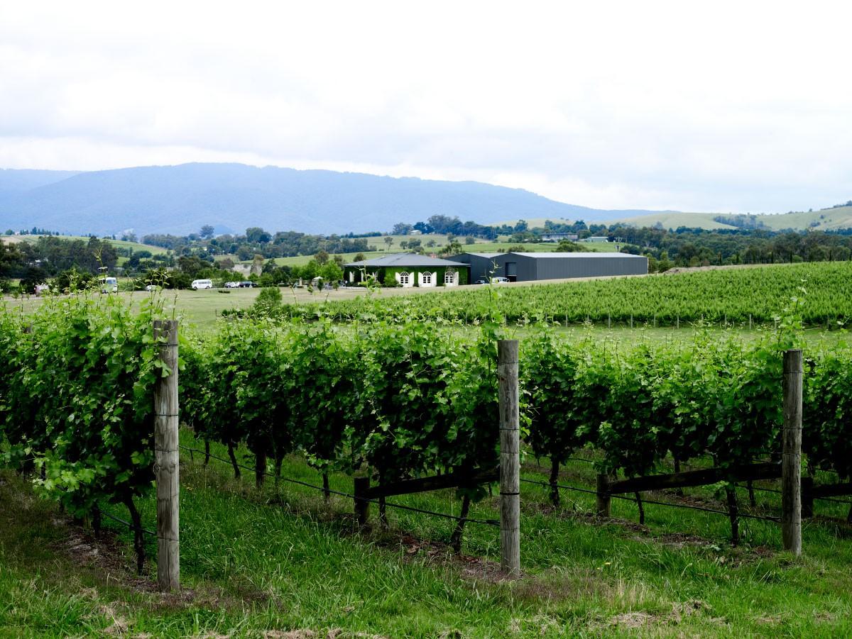 Dominique Portet - Yarra Valley