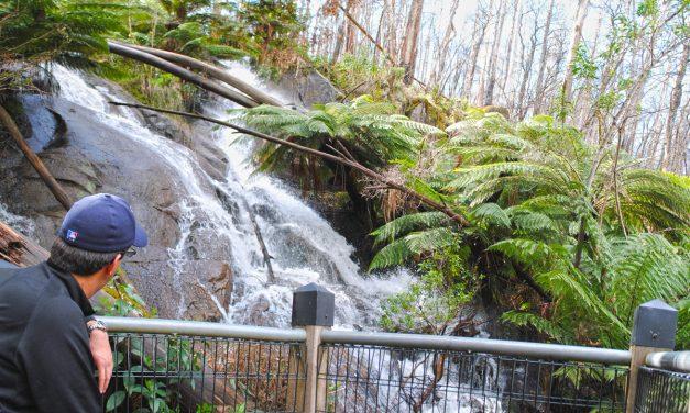 Phantom Falls – Lady Talbot Drive – Yarra Ranges National Park – Victoria