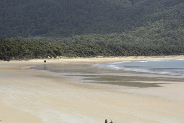 Tidal River to Refuge Cove