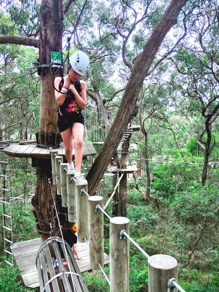 Tree Surfing at Enchanted Adventure Garden - Arthurs Seat - Mornington Peninsula - Victoria
