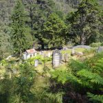 Walhalla Cemetery Walk – Walhalla – Victoria – Australia (Bare Bones Bushwalking)