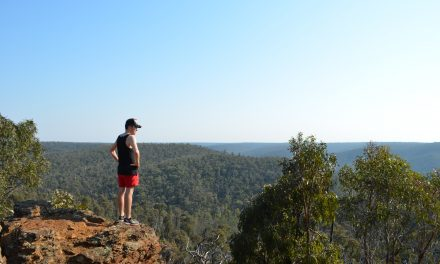 Ted Errey Nature Circuit – Brisbane Ranges National Park (Victoria)