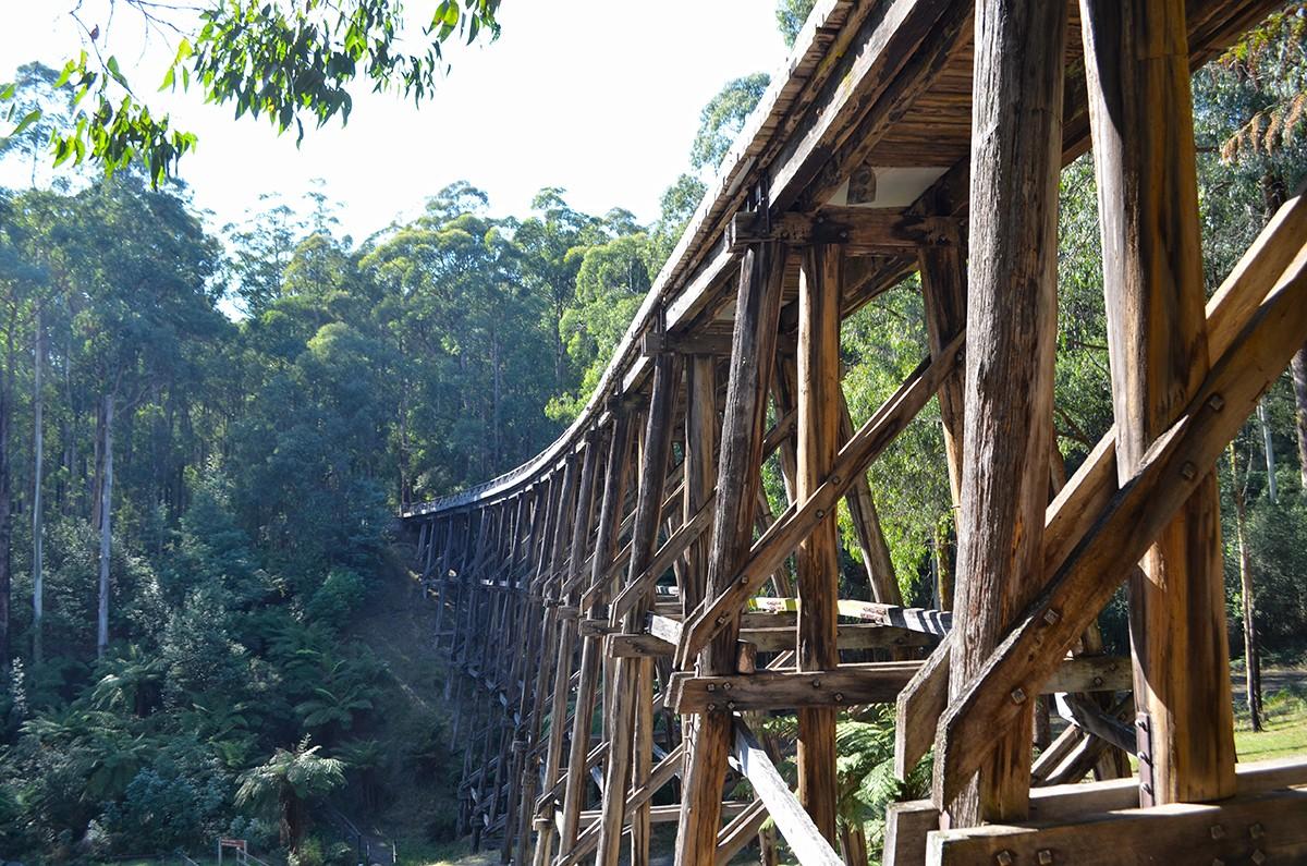 Noojee Trestle Bridge - Noojee - Victoria
