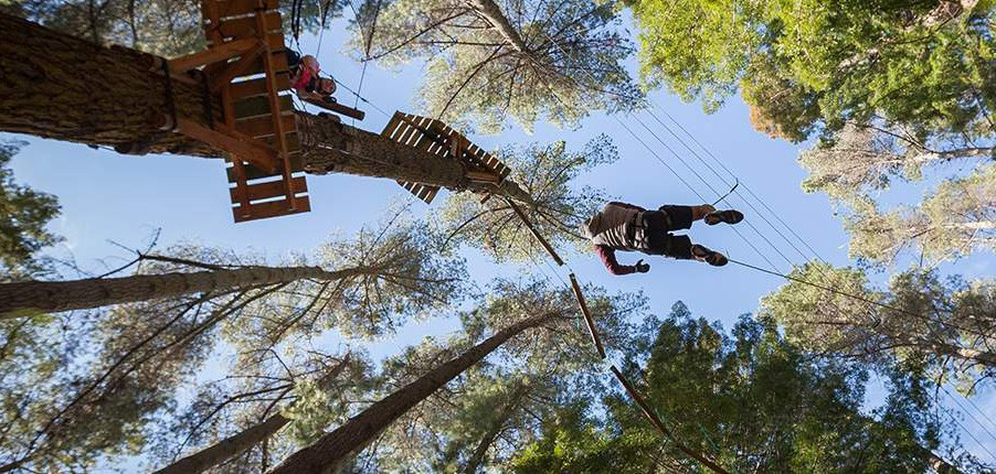 Hollybank Park tree top rope adventure - Launceston - Tasmania