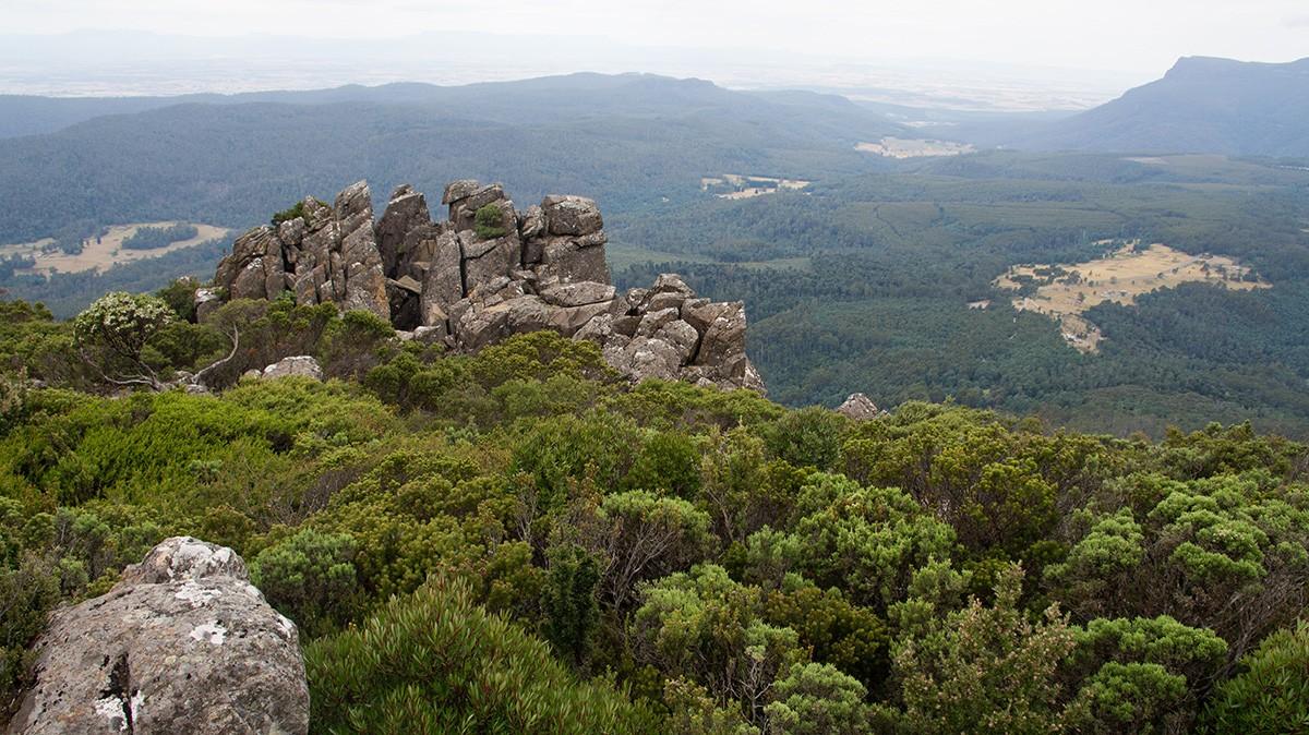 Quamby Bluff Hike - Tasmania