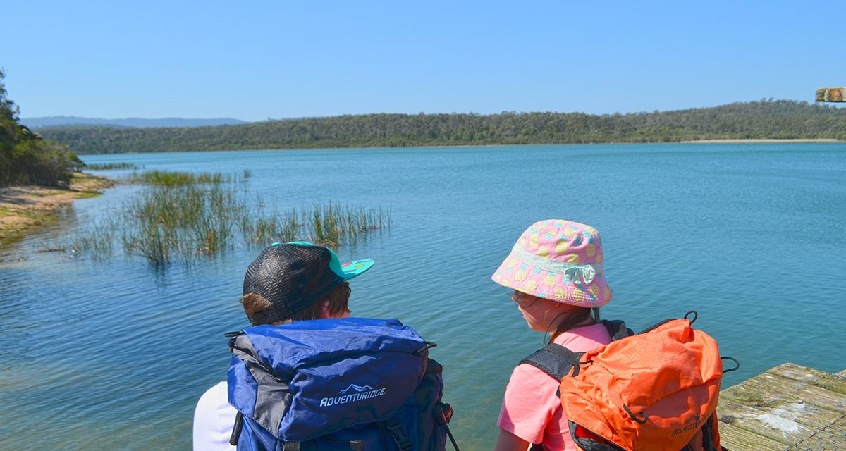 Lysterfield Lake & Lysterfield Park: The ultimate guide