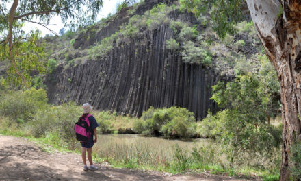 Organ Pipes National Park: Hiking, picnicking, wildlife & geology at Melbourne's doorstep