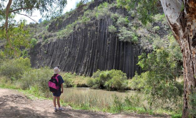 Organ Pipes National Park: Hiking, picnicking, wildlife & geology at Melbourne's doorstep
