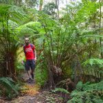 Whipstick Loop – Wombat State Forest – Blackwood (Victoria)