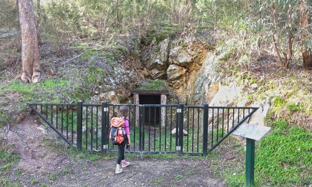 Gold Heritage Walk: Warrandyte State Park (Victoria)