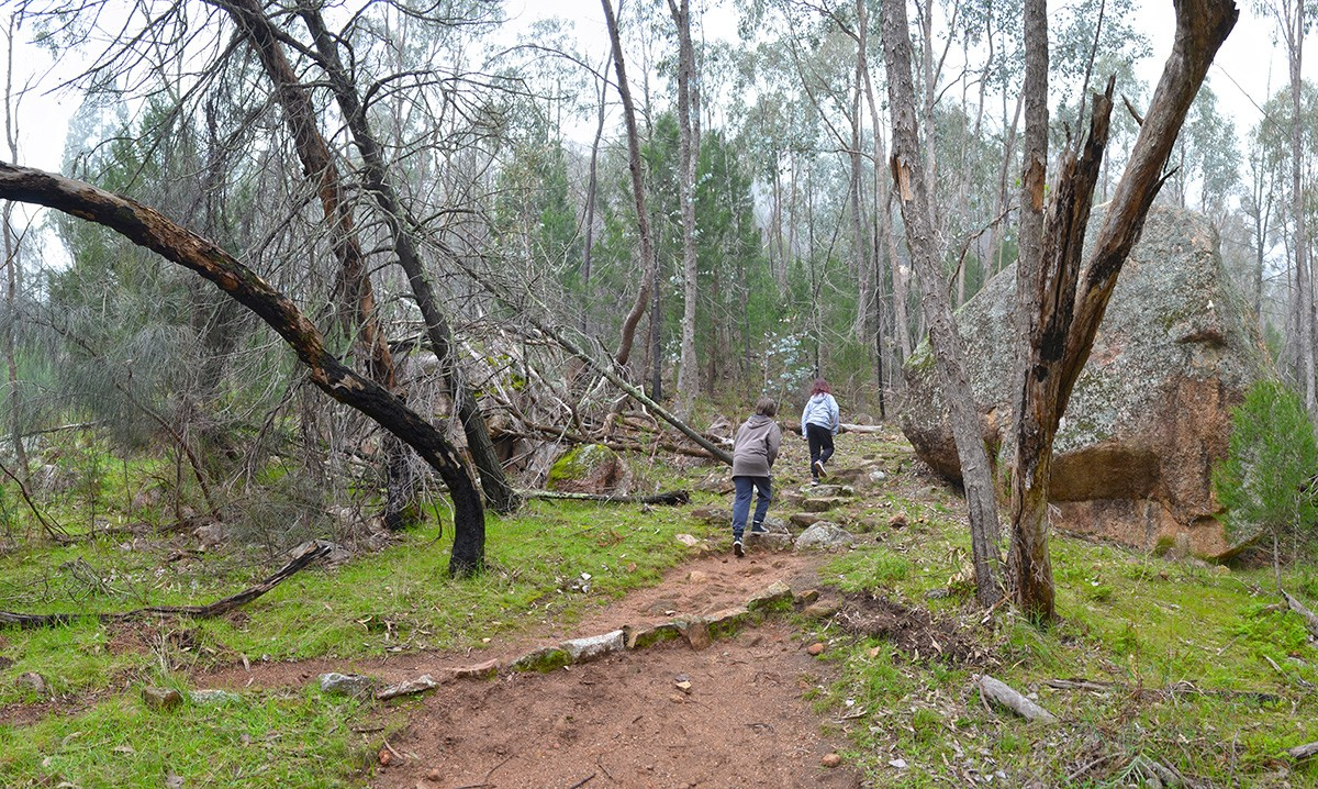 Yeddonba Aboriginal Heritage Site - Chiltern-Mt Pilot National Park (Victoria)