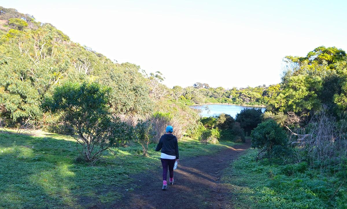 Wagon Bay Loop - Tower Hill