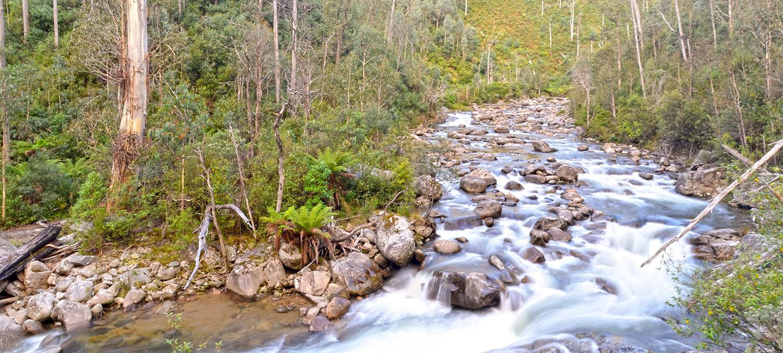 Kiewa River - Alpine National Park
